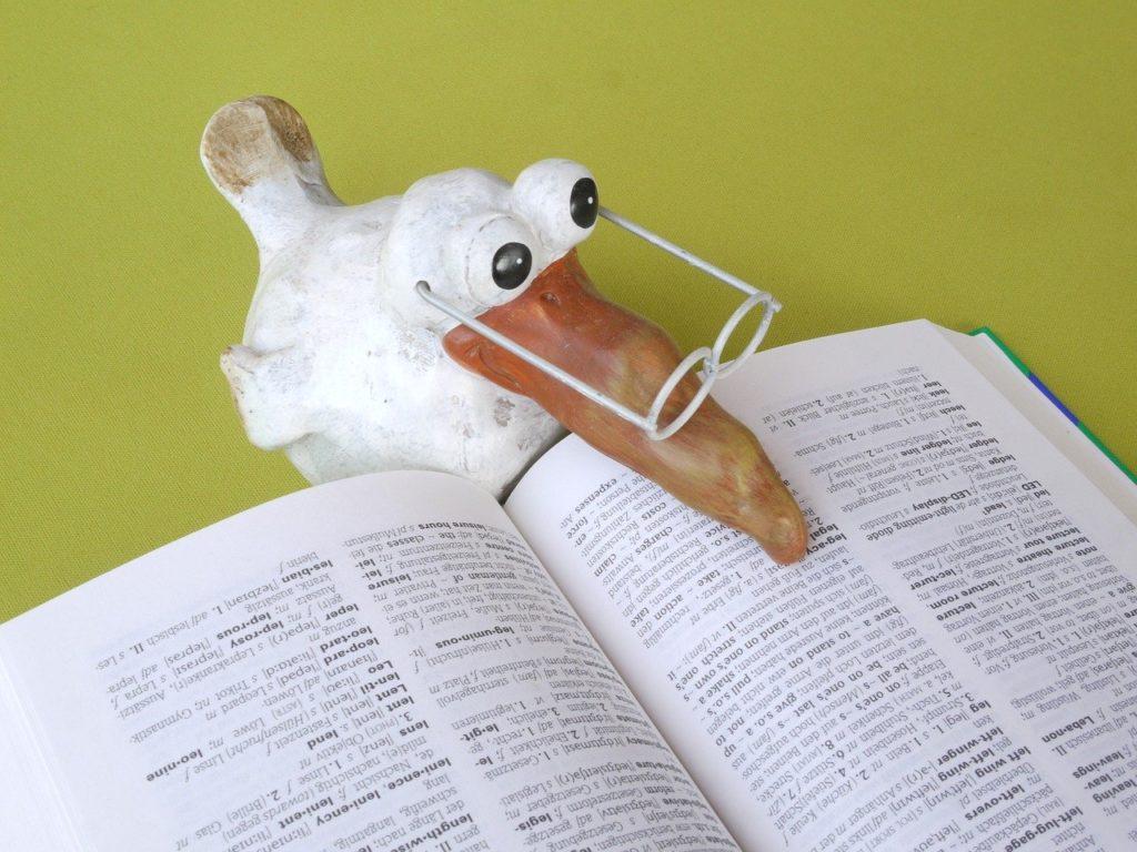 Un oiseau rigolo pointe son bec sur une page d'un dictionnaire