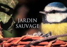 Jardin sauvage film